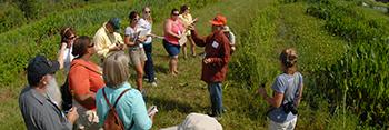 Florida Invasive Plant Education Initiative & Curriculum
