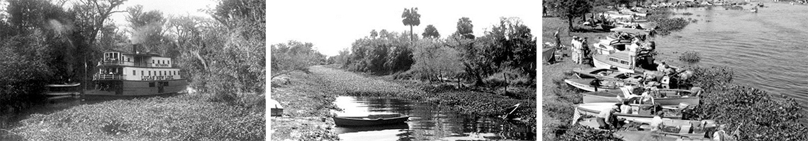 Photo History of Florida Steamboats and Water Hyacinth Management