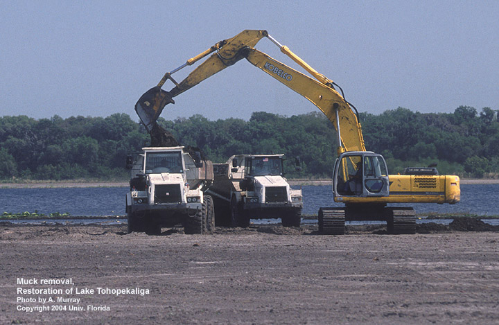 Muck removal/restoration of Lake Tohopekaliga, FL